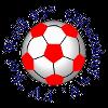 FV Rot-Weiß 93 Olbersdorf